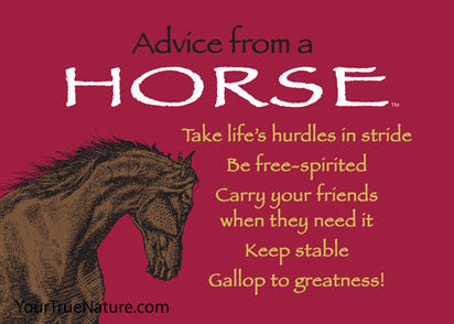 Advice From A Horse Jumbo Magnet Your True Nature Inc