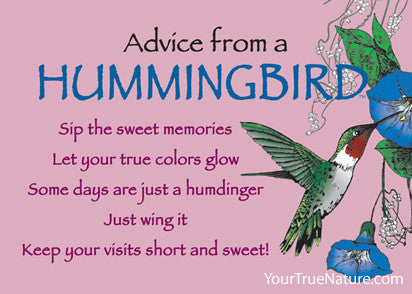 Advice from a Hummingbird Jumbo Magnet