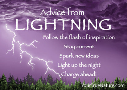 Advice from Lightning Jumbo Magnet