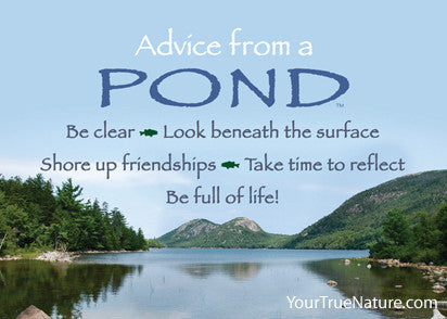 Advice from a Pond Jumbo Magnet