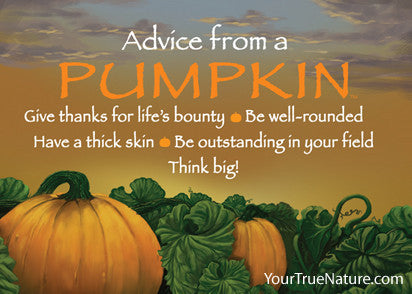 Advice from a Pumpkin Jumbo Magnet