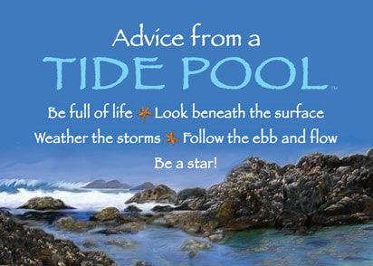 Advice from a Tide Pool Jumbo Magnet