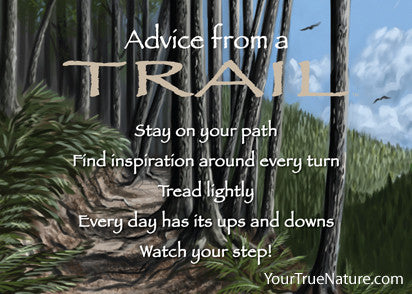 Advice from a Trail Jumbo Magnet