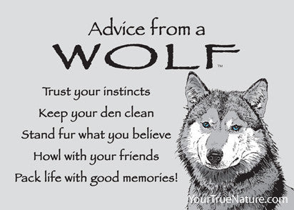 Advice from a wolf jumbo magnet