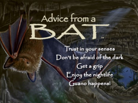 Advice from a Bat Jumbo Magnet