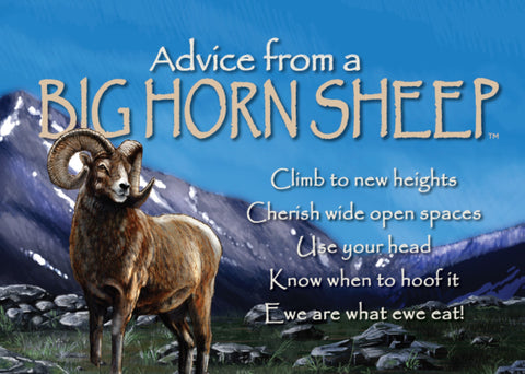 Advice from a Bighorn Sheep Jumbo Magnet