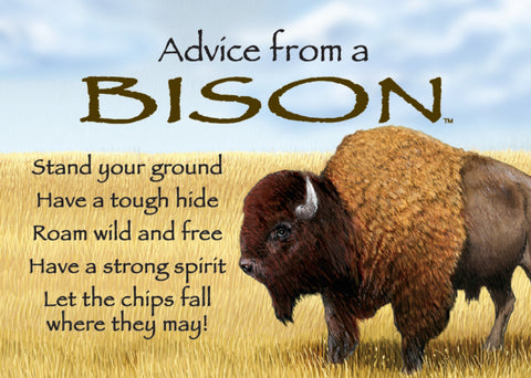 Advice from a Bison Jumbo Magnet