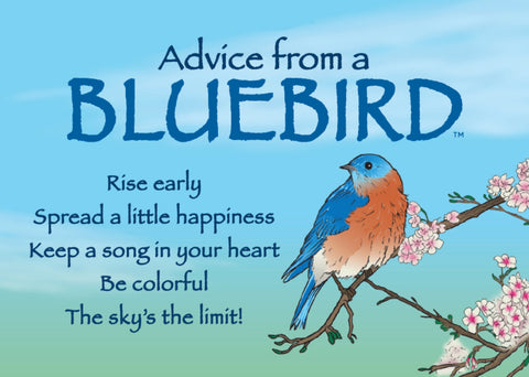 Advice from a Bluebird Jumbo Magnet