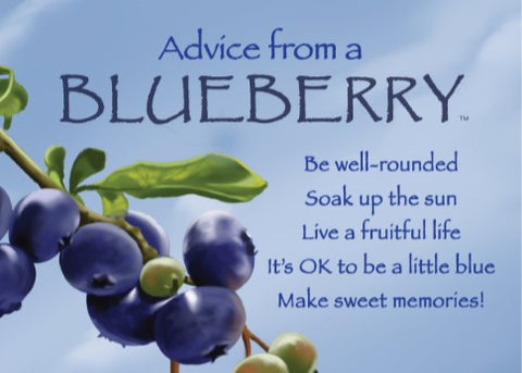 Advice from a Blueberry Jumbo Magnet
