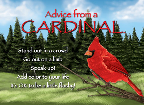 Advice from a Cardinal Jumbo Magnet