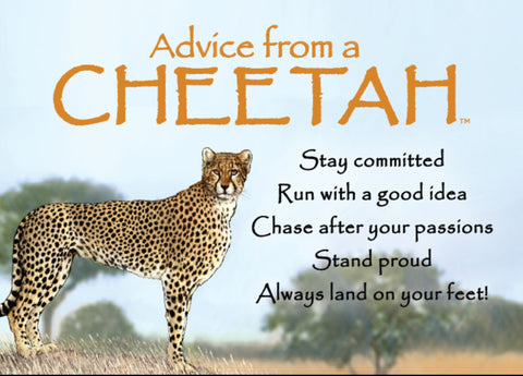 Advice from a Cheetah Jumbo Magnet