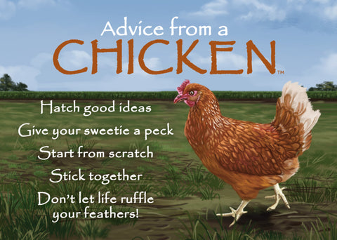 Advice from a Chicken Jumbo Magnet
