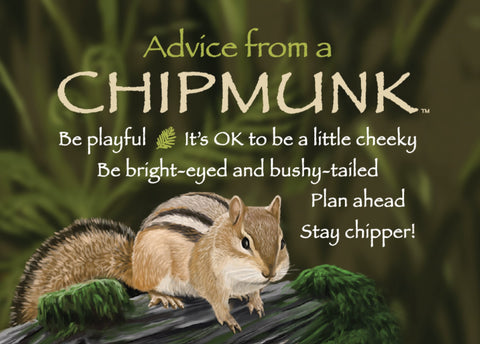 Advice from a Chipmunk Jumbo Magnet