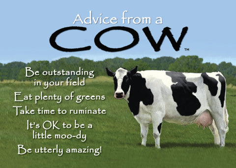 Advice from a Cow Jumbo Magnet