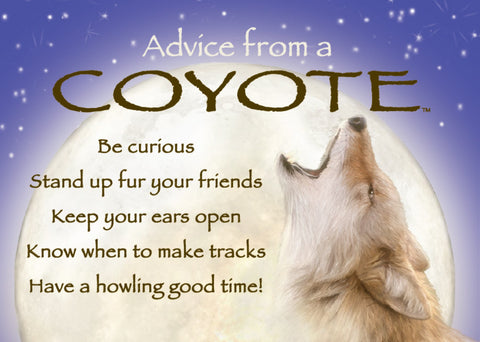 Advice from a Coyote Jumbo Magnet