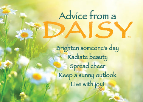 Advice from a Daisy Jumbo Magnet