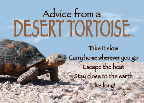 Advice from a Desert Tortoise Jumbo Magnet