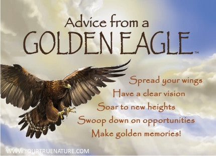 Advice from a Golden Eagle Jumbo Magnet