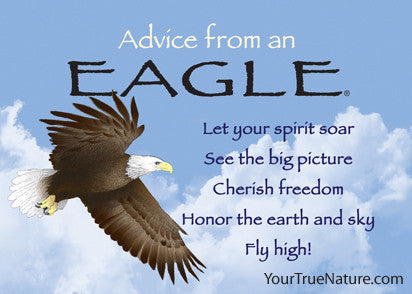 Advice from an Eagle Jumbo Magnet