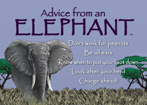 Advice from an Elephant Jumbo Magnet