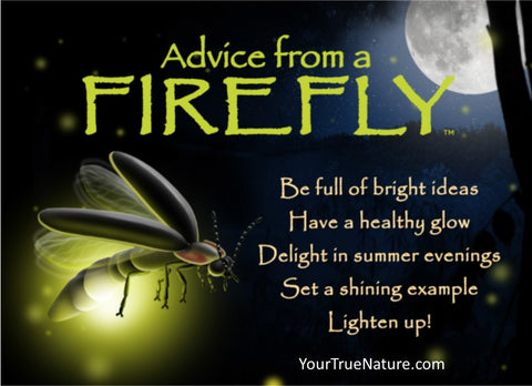 Advice from a Firefly Jumbo Magnet