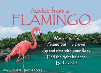 Advice from a Flamingo Jumbo Magnet