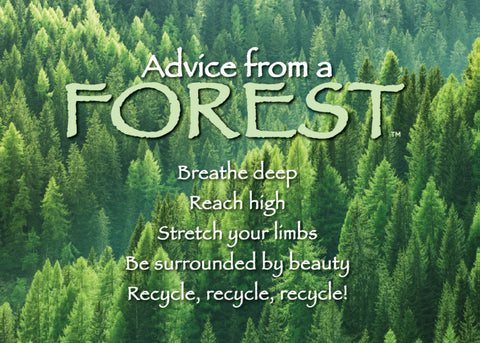 Advice from a Forest Jumbo Magnet