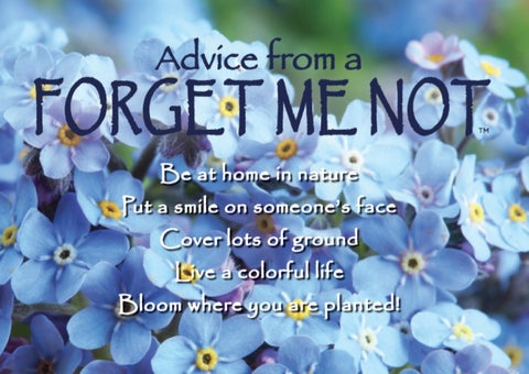 Advice from a Forget Me Not Jumbo Magnet