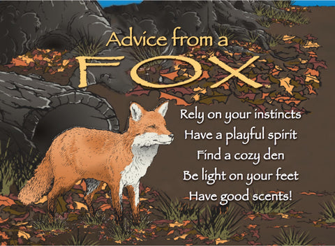 Advice from a Fox Jumbo Magnet