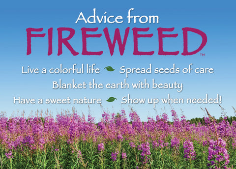 Advice from Fireweed Jumbo Magnet