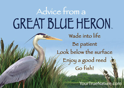 Advice from a Great Blue Heron Jumbo Magnet