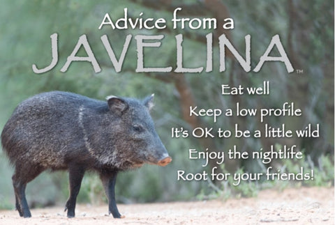 Advice from a Javelina - Jumbo Magnet