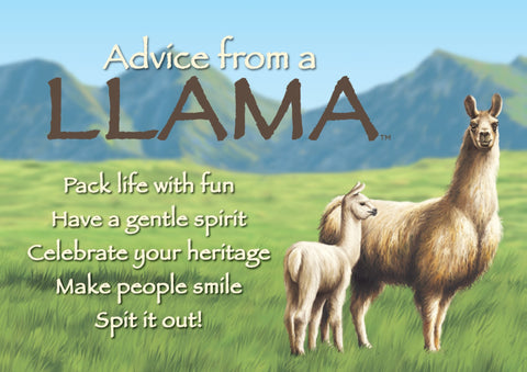 Advice from a Llama Jumbo Magnet