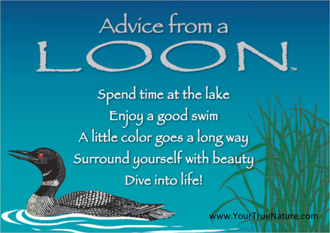 Advice from a Loon Jumbo Magnet