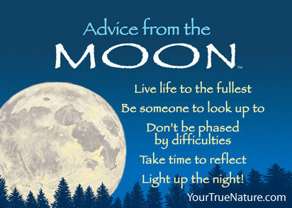 Advice from the Moon Jumbo Magnet