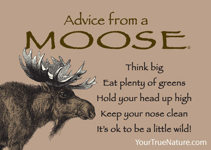 Advice from a Moose Jumbo Magnet