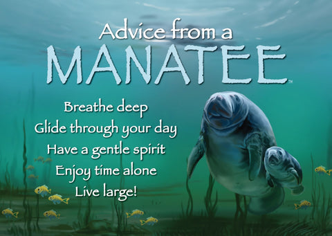 Advice from a Manatee Jumbo Magnet