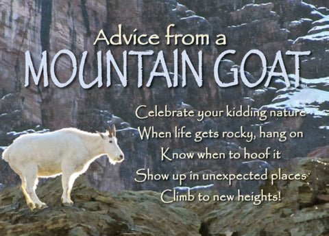 Advice from a Mountain Goat Jumbo Magnet