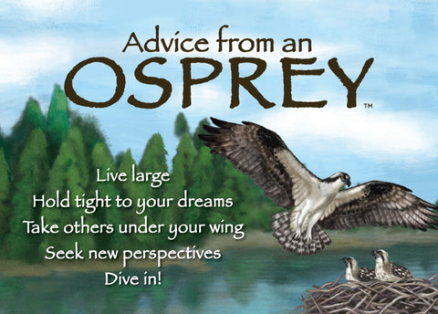 Advice from an Osprey Jumbo Magnet