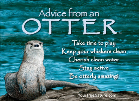 Advice from an Otter Jumbo Magnet
