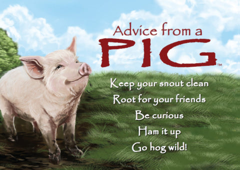 ADVICE FROM A PIG Country Farm Home Decor Sign NEW GO HOG WILD HAM IT UP