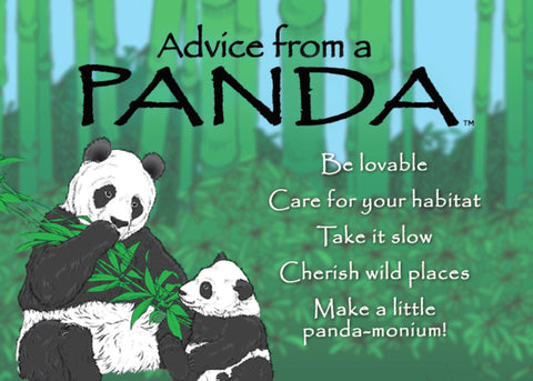 Advice from a Panda Jumbo Magnet