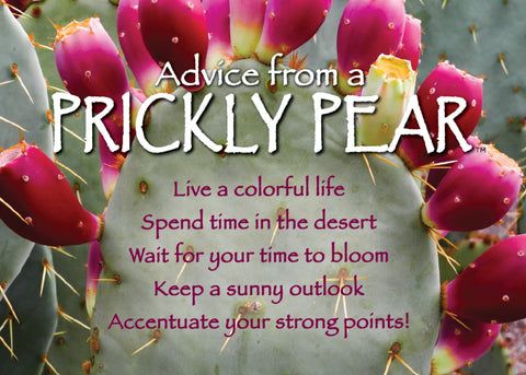 Advice from a Prickly Pear- Jumbo Magnet