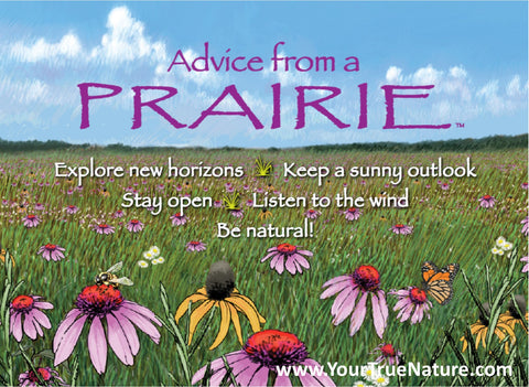 Advice from a Prairie Jumbo Magnet