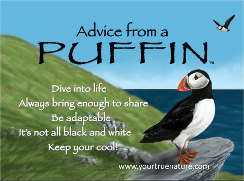 Advice from a Puffin Jumbo Magnet