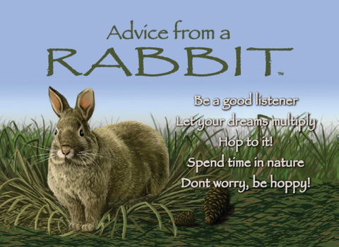 Advice from a Rabbit Jumbo Magnet