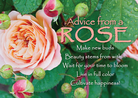 Advice from a Rose Jumbo Magnet