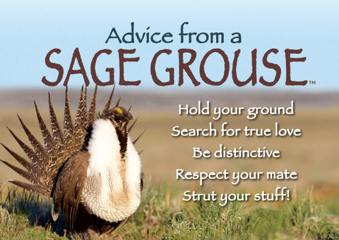 Advice from a Sage Grouse Jumbo Magnet