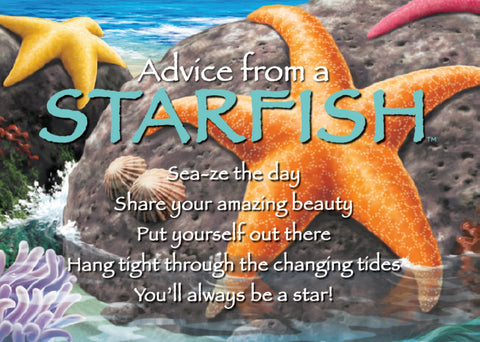 Advice from a Starfish Jumbo Magnet