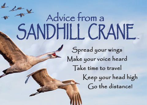 Advice from a Sandhill Crane Jumbo Magnet